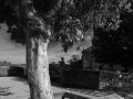 0046 plaza carballo 04