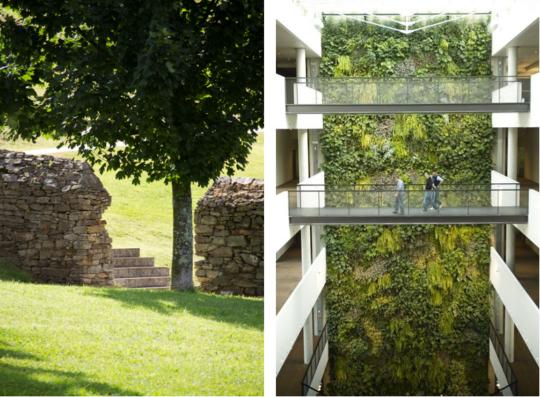 """Aberta a matrícula nos cursos """"Instalación e mantemento de xardíns e zonas axardinadas para arquitectos"""" e """"Cubertas axardinadas e xardinería vertical para arquitectos"""""""