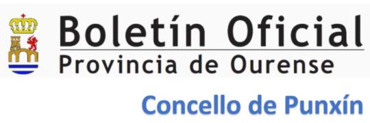 Concello de Punxín |  Convocatoria para contratación dun asesor urbanístico