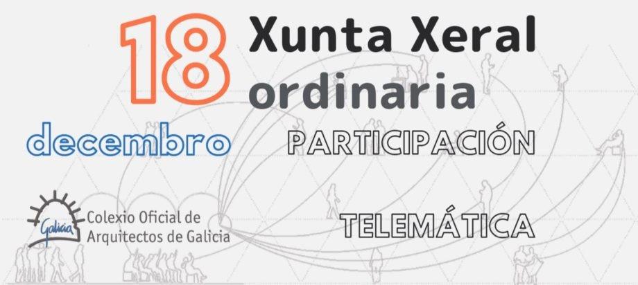Participación telemática na Xunta Xeral ordinaria do 18 de decembro