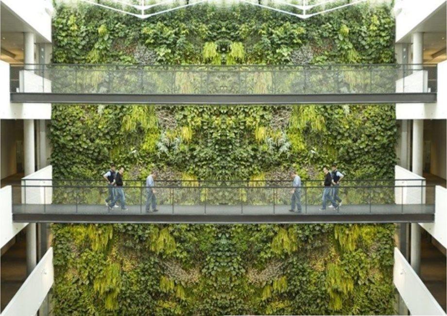 Últimos días de matrícula no curso «Cubertas axardinadas e xardinería vertical para arquitectos»