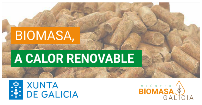 Seminarios para arquitecturas e enxeñerías – Biomasa, a calor renovable